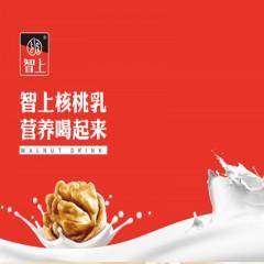 智上核桃乳A果云南高品核桃乳来自核桃之乡的云南凤庆大山深处天然植物蛋白